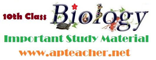 SSC/10th Class Biological Science  Important Study Material Telugu/English Mediums, Important Biological Science  SSC Study Material Telugu and English Mediums
